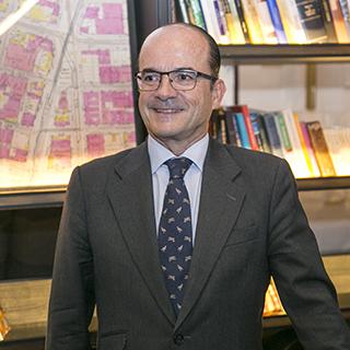 D. Francisco Javier Tornos Martín-Fernández
